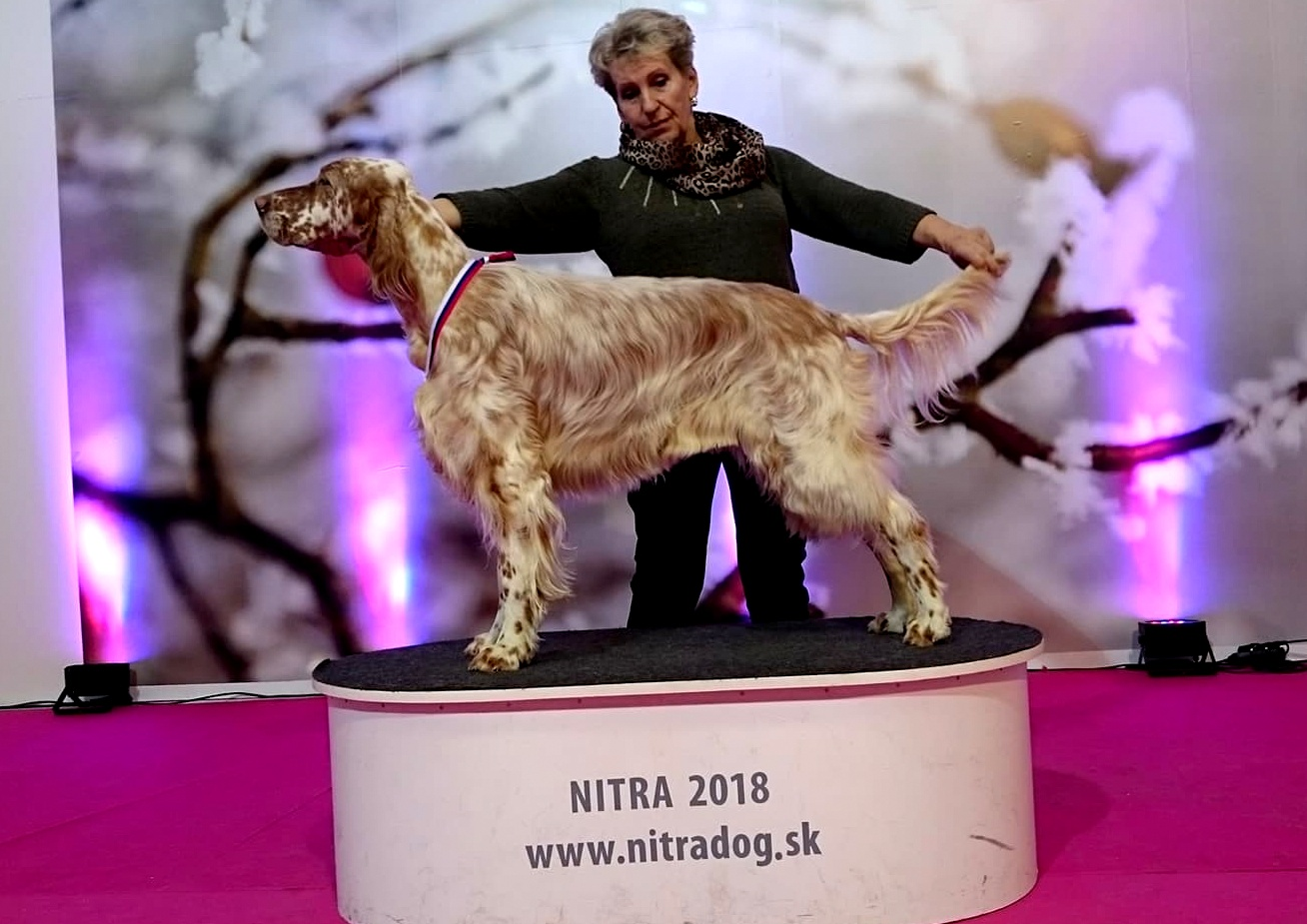 Nitra 2018